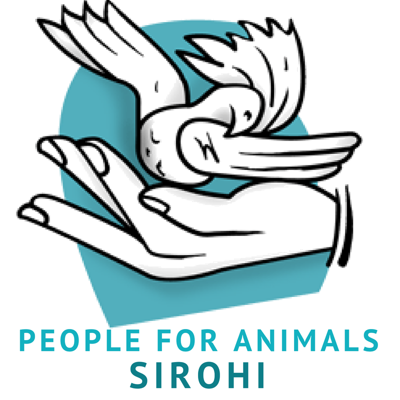 PEOPLE FOR ANIMALS SIROHI RAJASTHAN