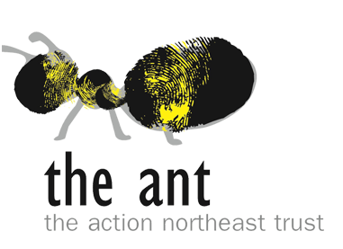 The Action Northeast Trust: The Ant