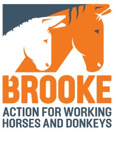 Brooke - Action for working Horses and Donkeys